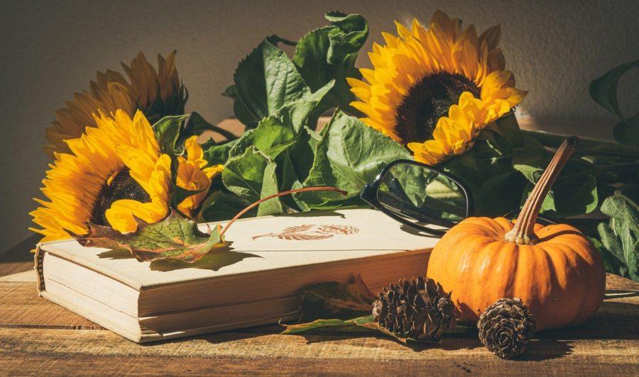 Thanksgiving pumpkin and sunflower